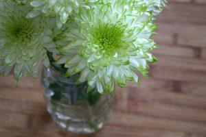 flowers-1417627_960_720